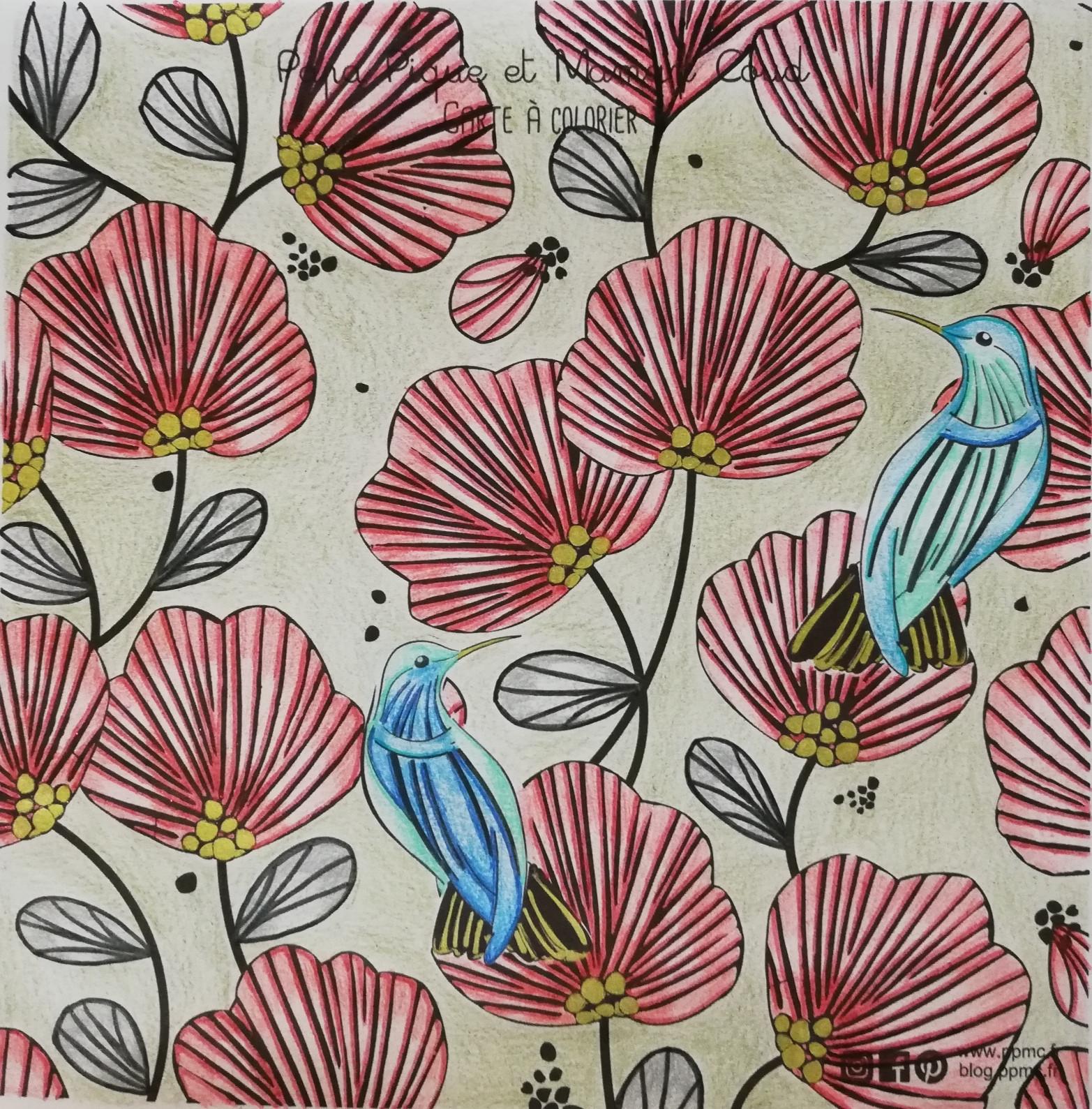 coloriage oiseau de noël