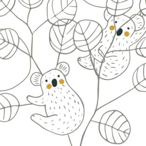 coloriage koala ppmc